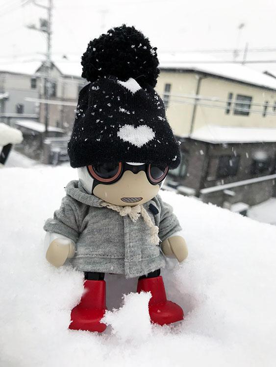 どかどか雪